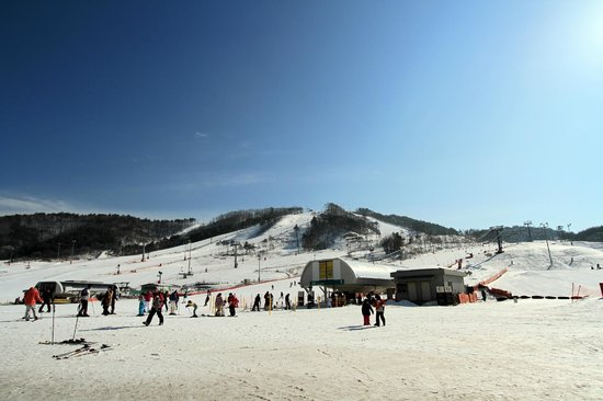 Holiday Inn and Suites Alpensia Pyeongchang Suite: Ski view