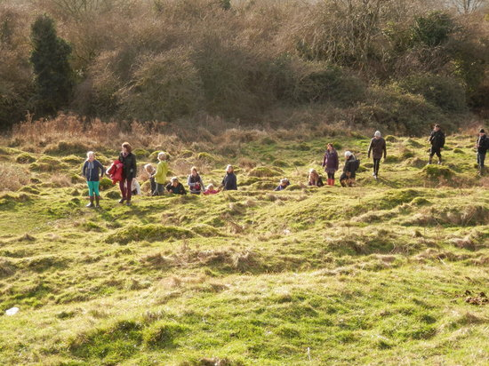 Little Solsbury Hill: Grassy near the top