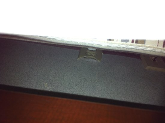 Old Hickory Inn: Hole in wall allows bugs easy access