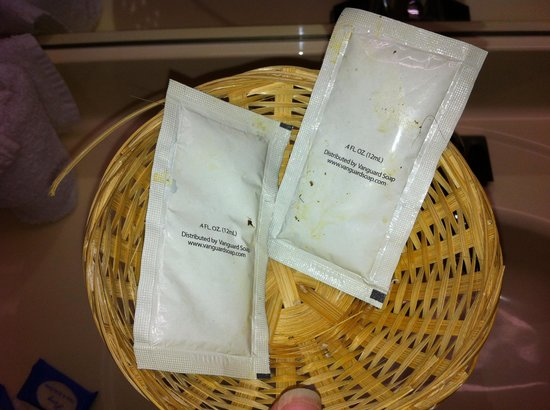 Old Hickory Inn : Thanks for the shampoo. Sticky, dirty packets with questionable materials stuck to it.