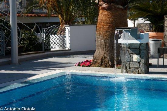 Grifo Hotel Charme & SPA: Dettaglio della piscina principale