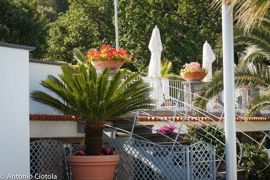 Grifo Hotel Charme & SPA: Dettaglio dell'ingresso dell'Hotel