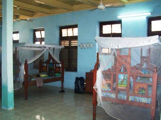 Zanzibar Lodge: The room