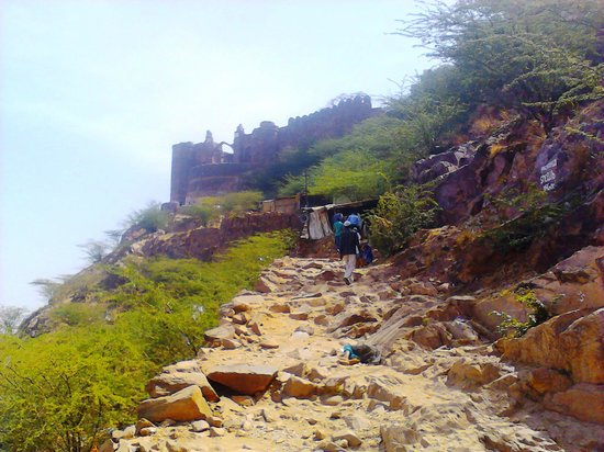 Taragarh fort and the path leading to iy