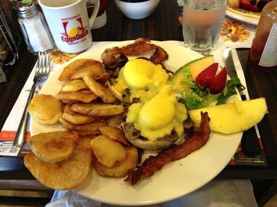 EggsOasis: Classic eggs benedict