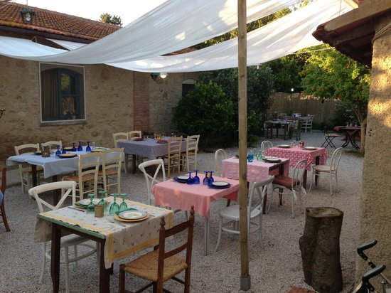 Vada, Italie : Giardino esterno