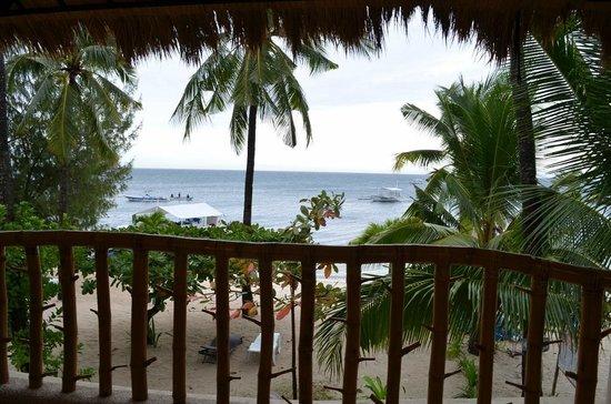 Ocean Vida Beach & Dive Resort: View from the terrace