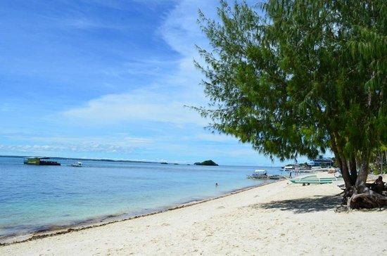 Ocean Vida Beach & Dive Resort: Beach in front of the hotel