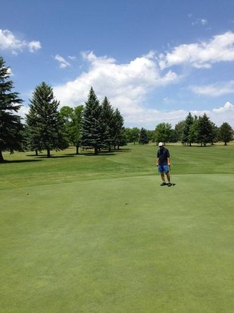 Collindale Golf Course: #16 green