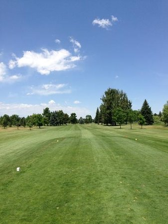 Collindale Golf Course: #17 tee shot