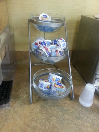 Days Inn Blacksburg Conference Center: yogurt not cooled