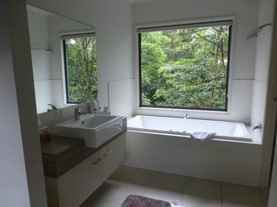 Pomodoras on Obi: View from the bathroom