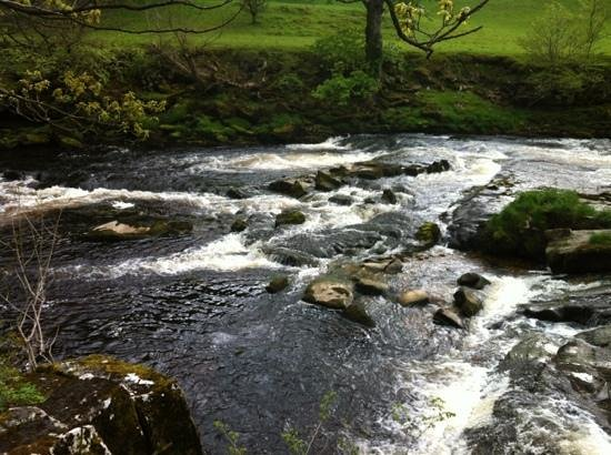 Howgill Holidays Caravan Park and B&B: spitting distance until you are on the gorgeous river wharfe walk