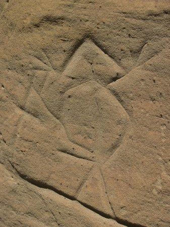 White Mountain Petroglyphs : Lizard petroglyph
