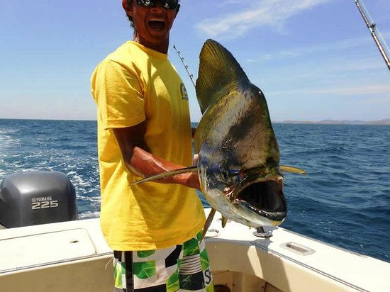 Papagayo Sportfishing: Offshore fishing on board the MONO boat