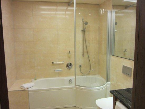 Maximilian Munich: Excellent shower
