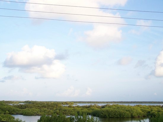 Las Terrazas Resort: lagoon view--the wires don't mar it