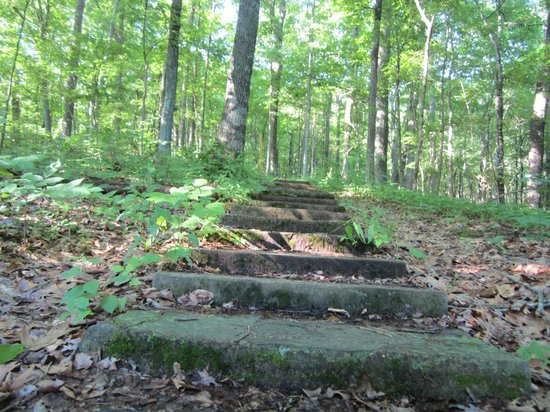 Rim Rock Recreational Area: Main trails have flagstone steps and paths