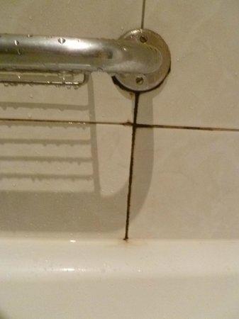 Villa Bellagio - Marne la Vallee: Dirty bath handle