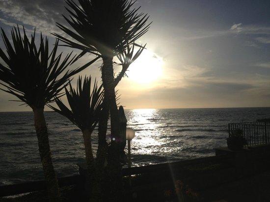 Paradise Beach Hostel : Bild 3