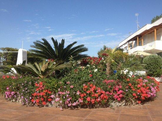 Paradise Beach Hostel: Bild 1
