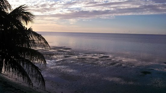 Yellowtail Inn: view from room 112 sunrise