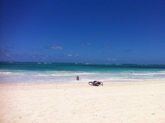 Paradisus Punta Cana Resort: Beach view