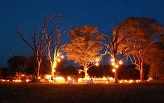 Londolozi Private Game Reserve: Londolozi Bushdinner