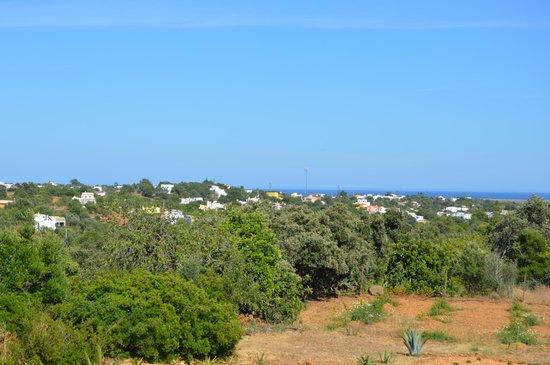 Guesthouse Quinta Saleiro : zonas verdes