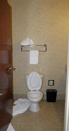 Comfort Inn Huntsville: bathroom