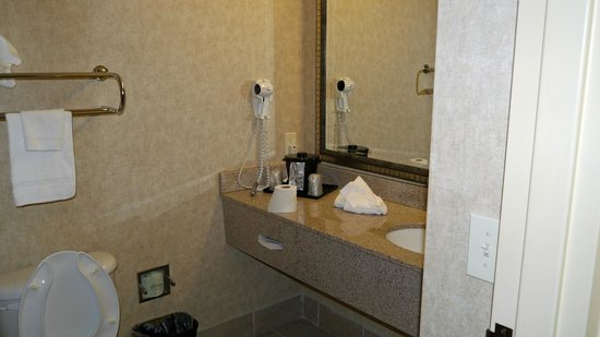 Comfort Inn Huntsville : bathroom sink