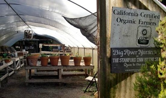 Stanford Inn by the Sea: Organic certification for 26 years old sustainable garden produce