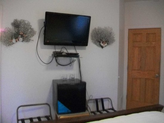 Moose Den Bed & Breakfast: Deck Room tv and mini fridge (we unplugged to make it even quieter)