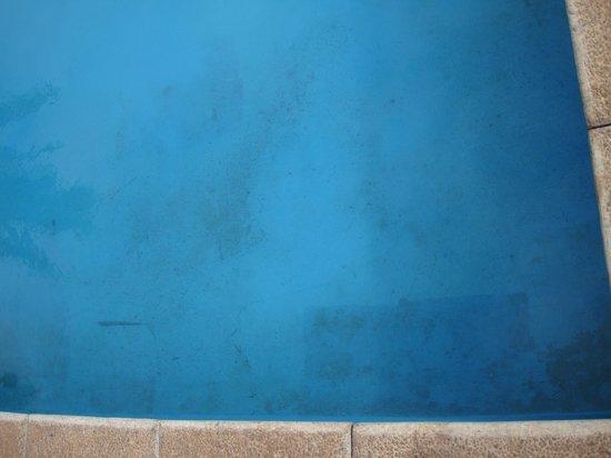 Taha Tai Hotel: Dirty pool