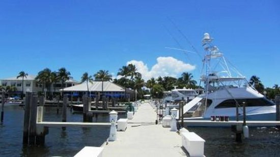 View of bar and restaurant from the dock picture of for Sailfish marina