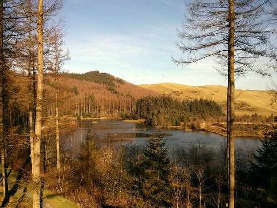 Bwlch Nant yr Arian Forest Visitor Centre: The lake (spectacular view as you are outside the welcome building)