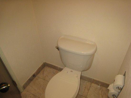 Fiesta Inn Queretaro: WC