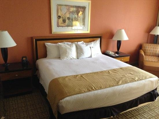 DoubleTree by Hilton Hotel Atlanta Airport: king room
