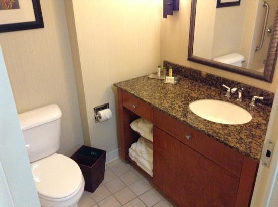DoubleTree by Hilton Hotel Atlanta Airport: Bathroom counter
