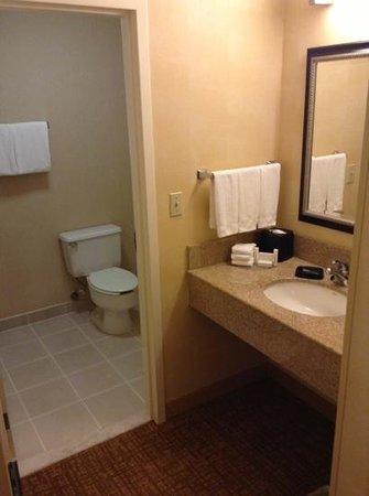 Courtyard Herndon Reston: Bathroom