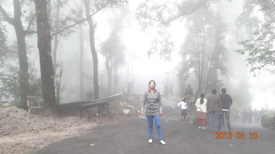 Padmaja Naidu Himalayan Zoological Park: Scenery