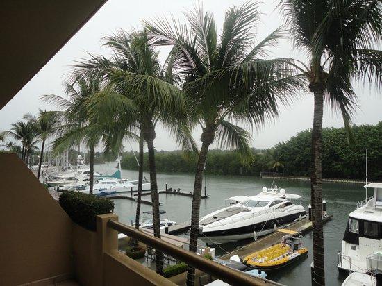 Paradise Village Beach Resort & Spa: Desde la habitación