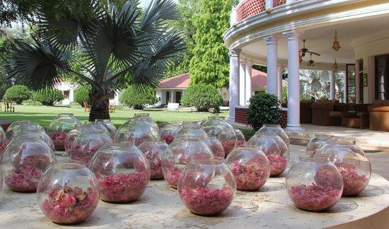 Vivanta by Taj - Sawai Madhopur Lodge: HOTEL GROUND