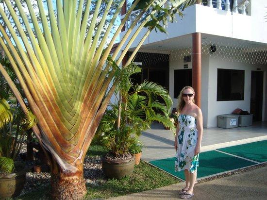 Sansuko Ville Bungalow Resort : Sansuko grounds