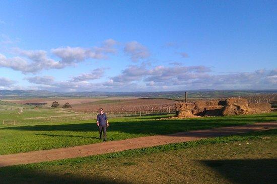 Pindarie Winery: Enjoying the view from Pindarie Estate