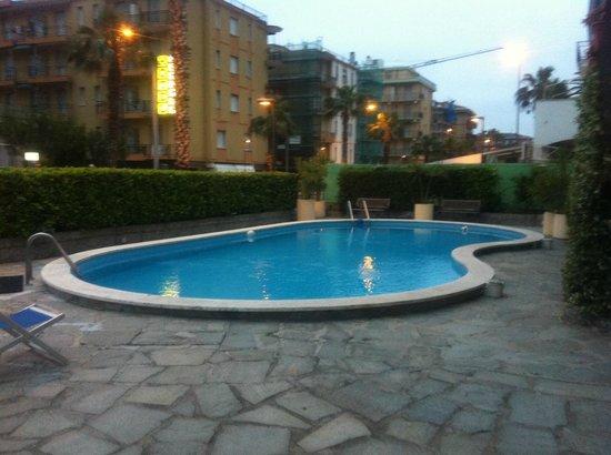 Hotel Villa Nicole: piscina pulita