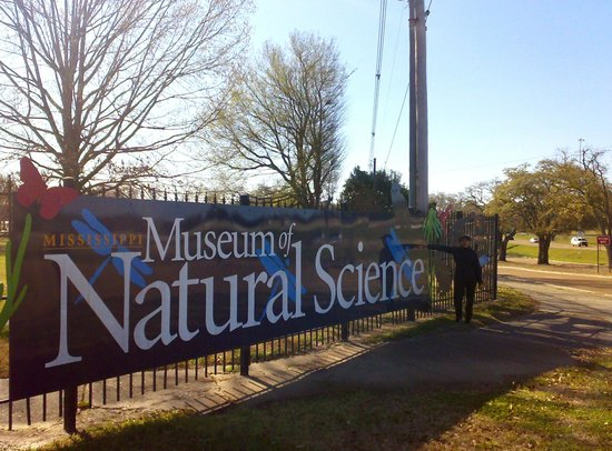 Jackson Mississippi Natural Science Museum