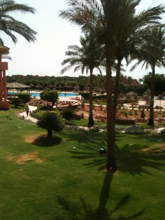 Parrotel Aqua Park: view from room