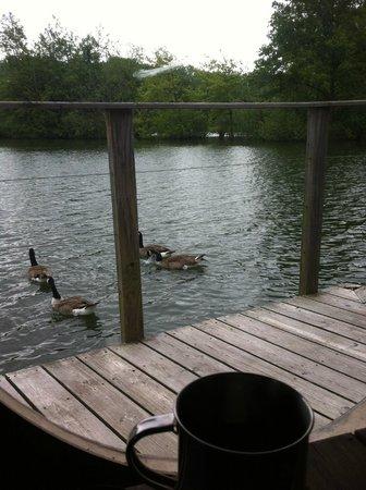 Les Cabanes des Grands Lacs : café du matin!