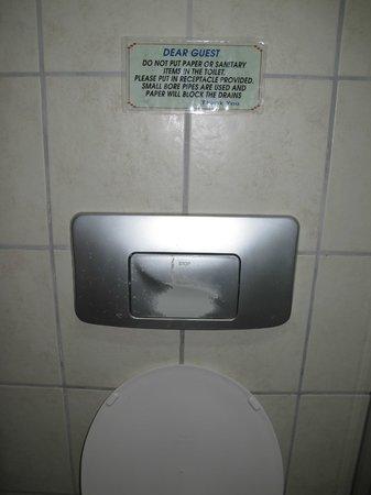 Asfiya Hotel : Worn off toilet